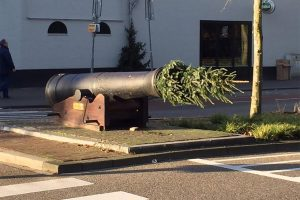 kerstbomen, bezorgen, spinbaan, kerstbaan